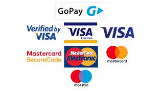 GoPay - Dostupné elektronické platby