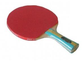 Pálka na stolní tenis DHS 202