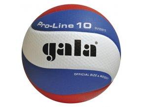 Míč volejbal PRO LINE 5581S vel 5