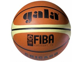 Míč basket CHICAGO BB5011C vel. 5