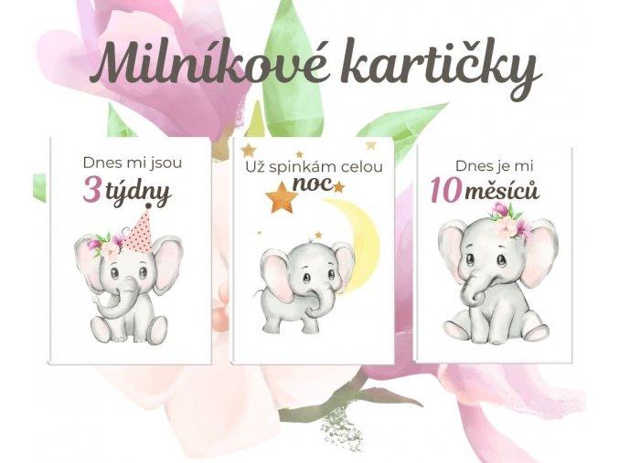 Milníkové kartičky - sloník pink