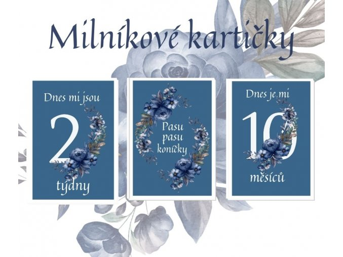 Milníkové kartičky - flower blue
