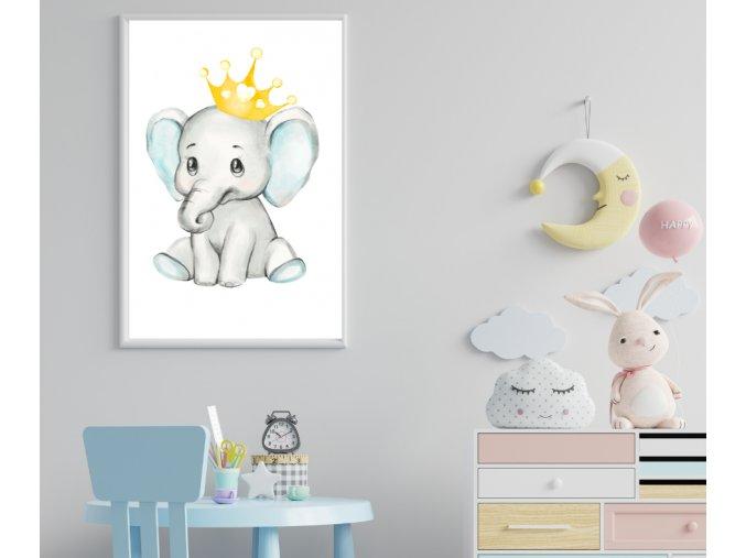 Plakát - sloník blue