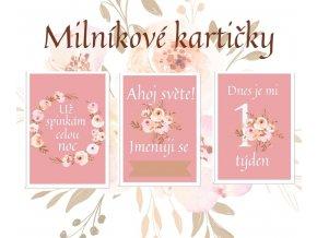 Milníkové kartičky - flower pink