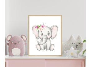 Plakát - sloník pink