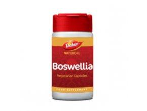 Boswellia 2048x
