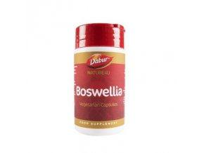 boswellia 1.2325775265