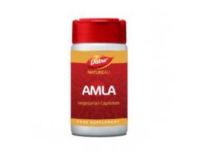 Amla 2048x