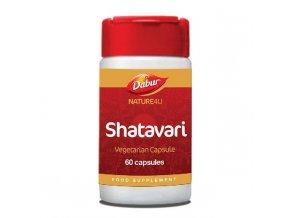 shatavari 2048x