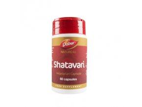 shatavari 1.3904587445