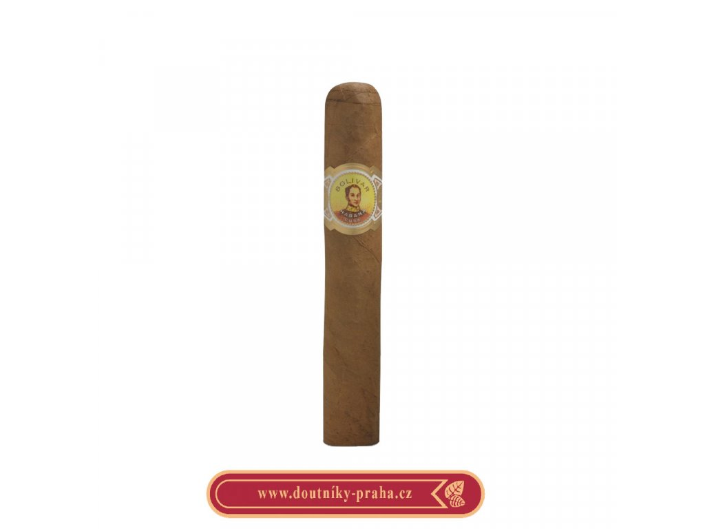 Bolivar Royal Coronas 1 ks pcs