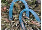Půlkruhová modrá poloprůhledná ucha
