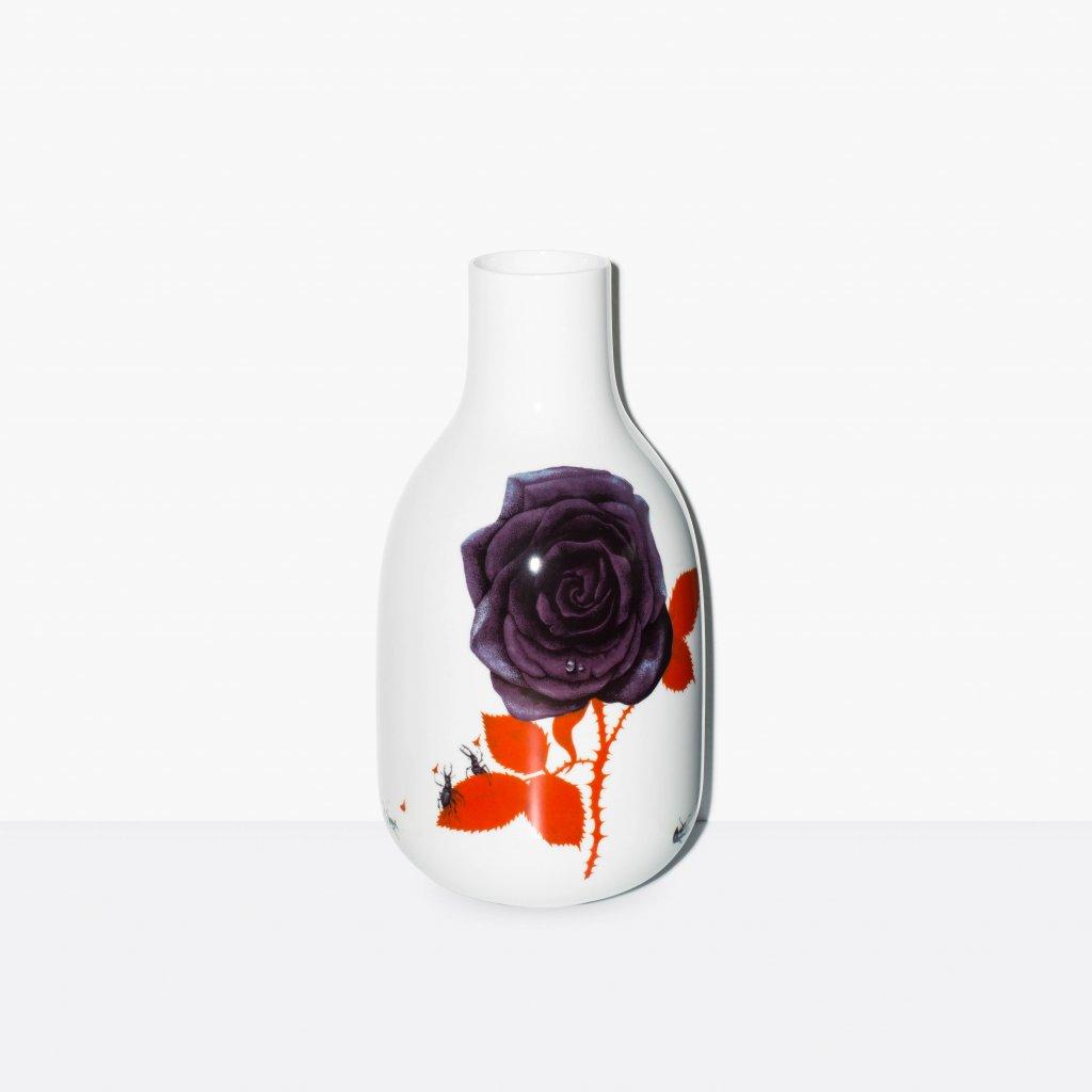 Křehký Naše květena, Šumová, Bačák (2) 001