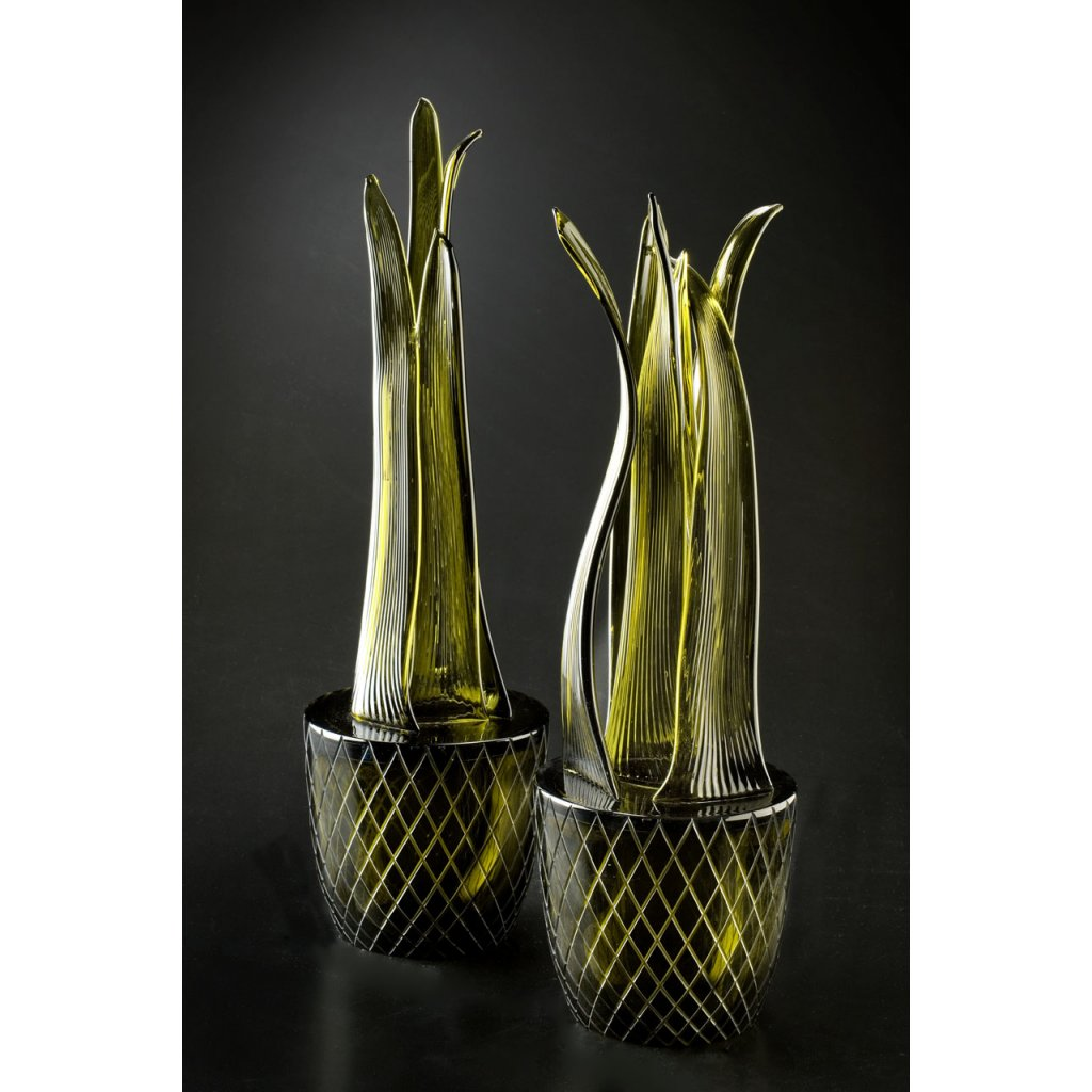 Q087 SNAKE PLANT collection
