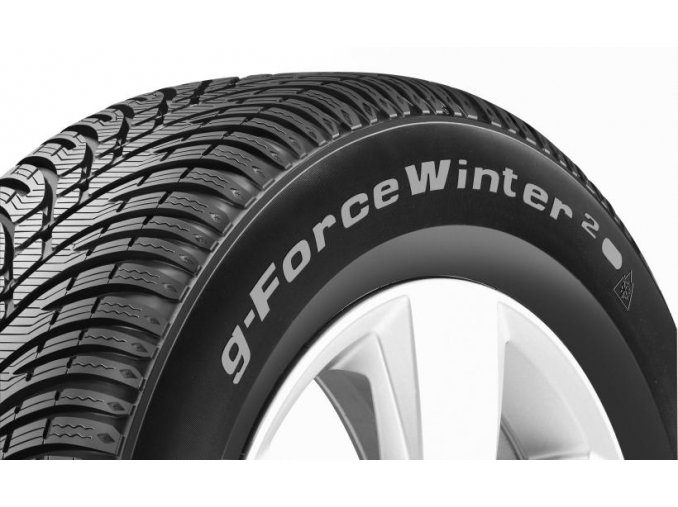 205/55 R 16 G-FORCE WINTER 2 91H