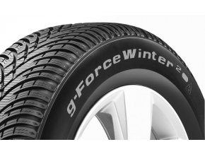 205/55 R 16 G-FORCE WINTER 2 91T