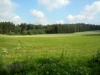 Nádherná příroda lokality - Lindy u Bobrůvky