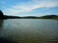 Pohled na vodní hladinu Velkého sklenského rybníku