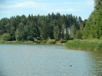 Velký sklenský rybník je největší vodní plochou ve zdejším okolí