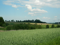 Výhled na pole a železniční trať pod sousední vesnicí Suky