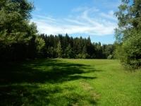 Krásné a hluboké lesy jsou všude kolem Skleného nad Oslavou