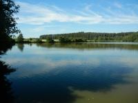 Další z mnoha rybníků u Skleného