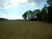 Jedno z mnoha vyhledávaných polí u vesnice Suky