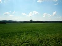 Pohled do krajiny s lípami v polích
