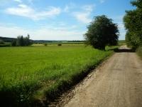 Na polích kolem Skleného nad Oslavou se stále dají najít krásné minerály a drahé kameny