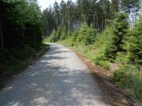 Silnička v lese u Bobrůvky