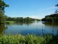 Rybník Babák nedaleko Skleného nad Oslavou