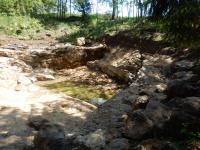 Těžební jáma v lese