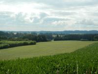 Vyhled ze Špačkovky na okolní pole