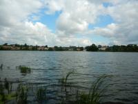 Pikárecký rybník v pozadí s vesničkou Pikárec