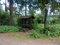 Lesní turistické odpočívadlo u rybníka Horní Tis