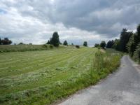 Četné zelené louky v okolí obce
