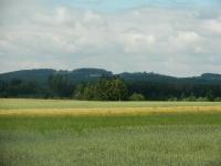 Zdejší kopcovitá krajina je porostlá převážně jehličnatými lesy