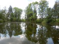 Rybníček na okraji obce Suky