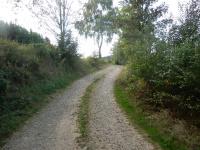 Polní cesta z Dolních Borů do oblasti zvané Hatě