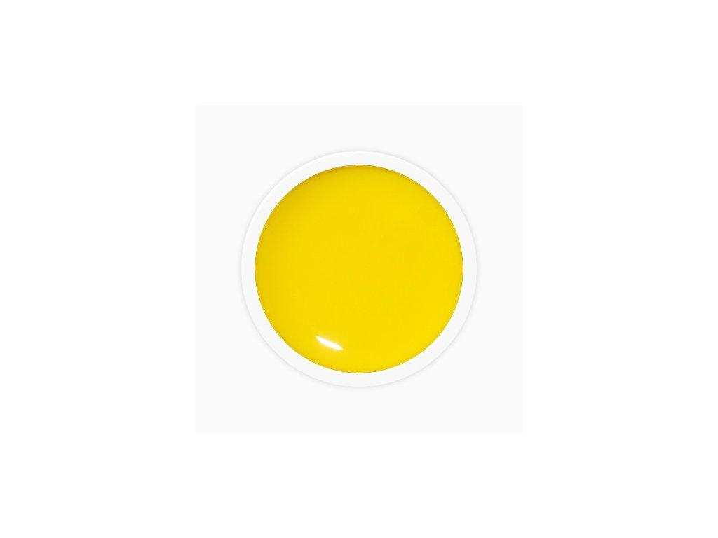 6563 sun flower uv gel dreamnails 5ml