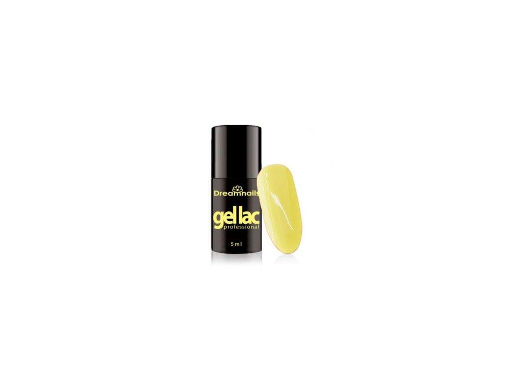GELLAK Dreamnails Professional 5ml 110