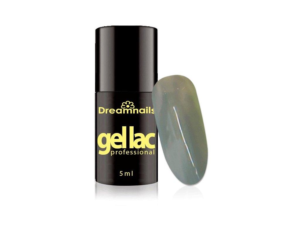 GELLAK Dreamnails Professional 5ml 43