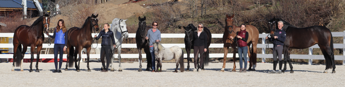 clenove_dressage_academy