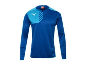 Puma Mestre Training Sweat Royal