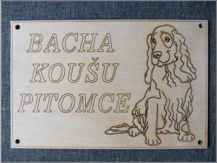 2159 cedulka bacha kousu