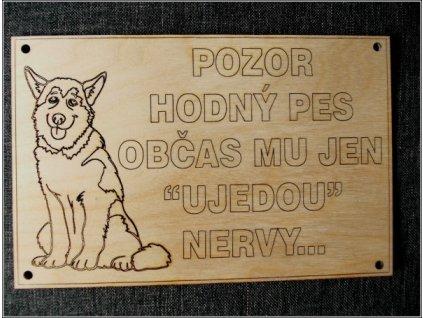 2261 cedulka pozor hodny pes