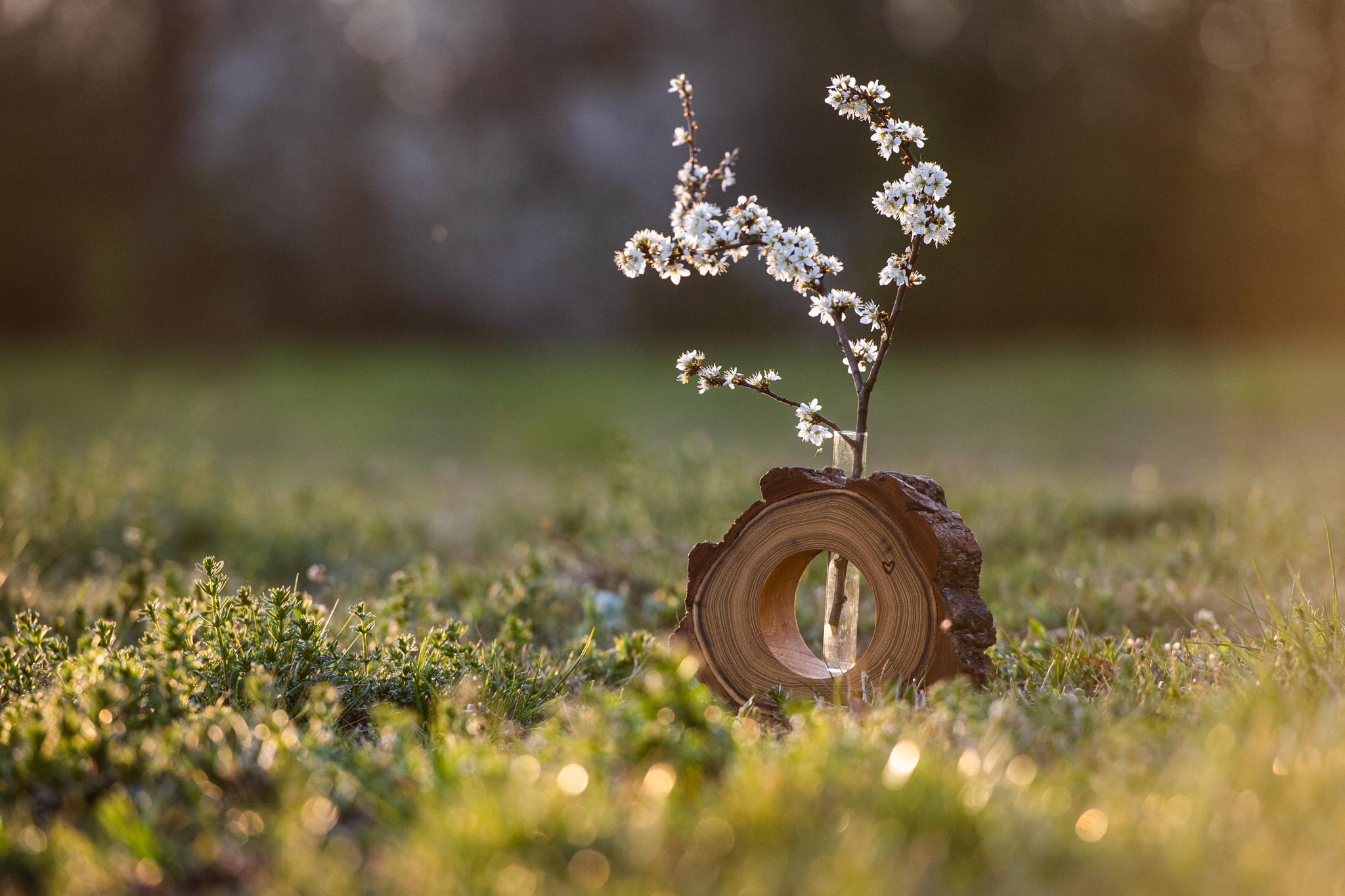 Akátová vázička. Váza je vyrobena ručně v kombinaci s ručně vyrobeným sklem...Dřevíčko je ošetřeno přírodní voděodpudivou směsí Odie's oil.