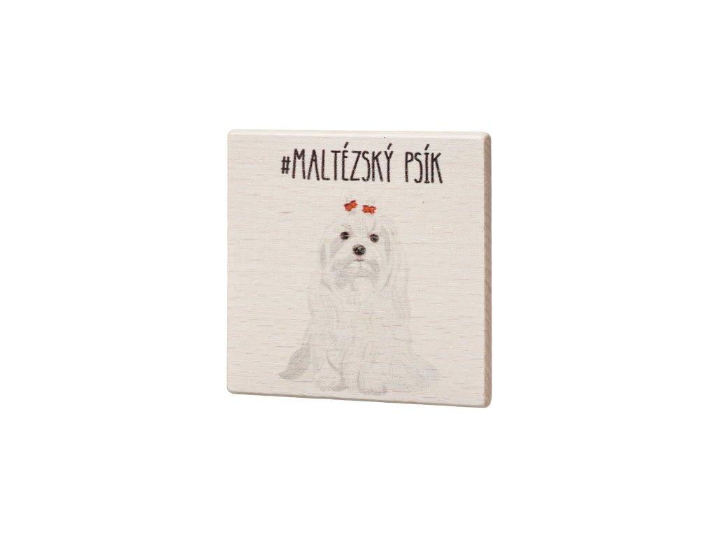 Dřevěný podtácek - Maltézský psík