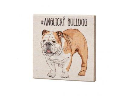 Dřevěný podtácek - Anglický bulldog