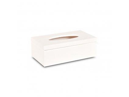 Dřevěná krabička na kapesníky bílá s panty